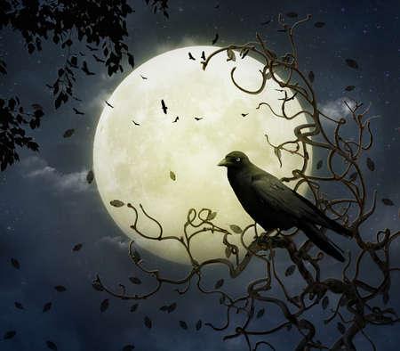 Il corvo e la luna piena Archivio Fotografico - 27613770