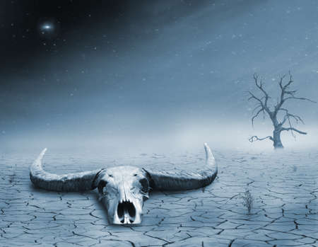 photomanipulation: photomanipulation in blue tones of a skull in the desert