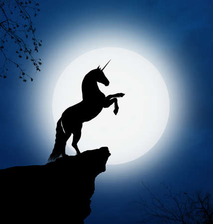 Fantastic unicorn in a full moon night photo
