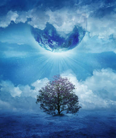 Last tree in an imaginary lonely planet