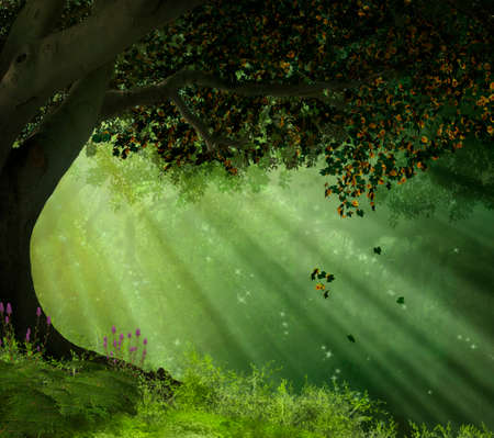 an old tree in a forest with rays of lights illuminating the scene