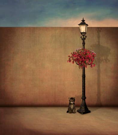 Piccolo gatto e lampione in serata