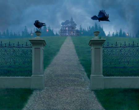 Mistery old house in the fog and two crows on the gate Standard-Bild