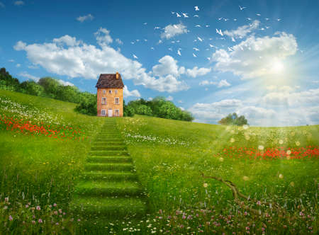 House in a green field with a grass stair and flowers on a sunny day