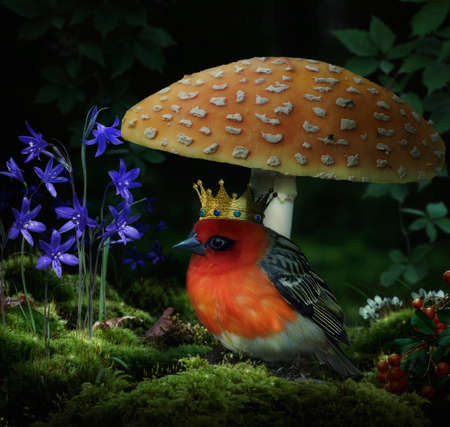 Sweet king bird under a mushroom in a fantasy forest