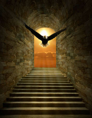 Fantasy eagle flying thruogh the tunnel at sunset.  Photomanipulation. 3D rendering.