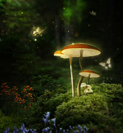 Fantasy mushrooms in the forest at night. 3D rendering. Photomanipulation. Digital art.