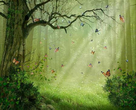 Fantasy forest with colorful butterflies flying among the rays of light. Photomanipulation. 3D rendering Standard-Bild