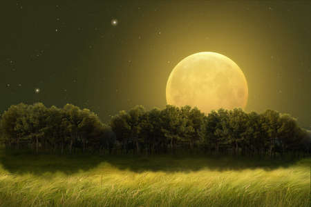 Fantastic night landscape of a field with trees on the horizon illuminated by a large full moon. Photo manipulation. Illustration.