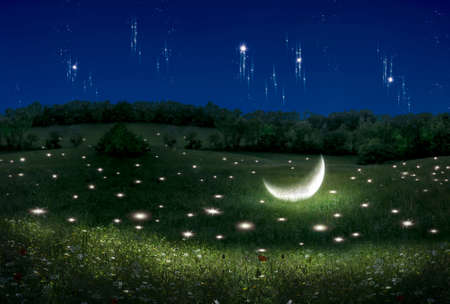 Fantasy scene of a landscape with stars and moon lying on the field. Photo manipulation. Illustration. 3D.