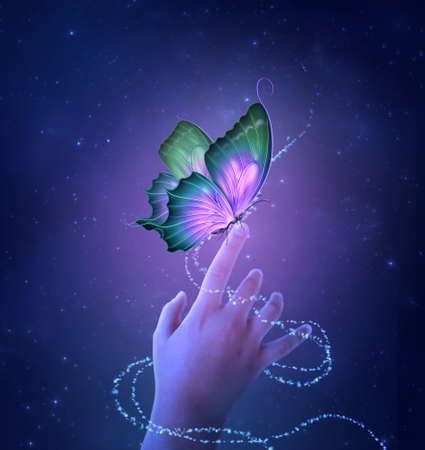 Little hand with fantasy butterfly on a starry night. Photomanipulation. 3D render. Banque d'images