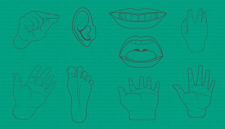 body parts is hand mouth foot ear element. doodle design style.  vector illustration eps10