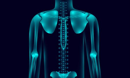 transparent human body anatomy background lighting with hand shoulder hip chest backbone, xray tone style. vector illustration eps10 Illustration