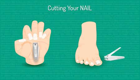 cutting hand and foot nail. body part beautiful color. vector illustration eps10