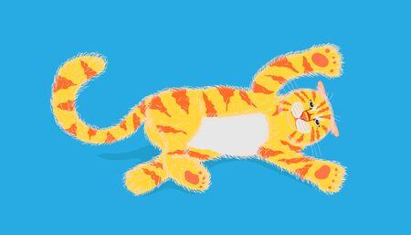 gatto che gioca qualcosa e flop su sfondo di colore blu pastello. illustrazione vettoriale eps10 Vettoriali