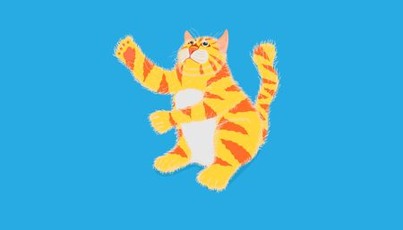 cat try to touch something over head and sitting on pastel blue color background. vector illustration eps10