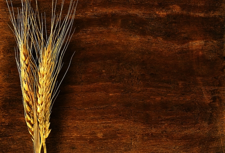 tritium: Ear of barley on wood background