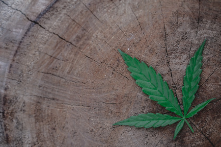 marijuana joint weed smoking close up on background