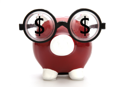 Piggy Bank and Dollar Signs on the white background photo