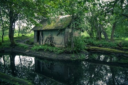swamp: Abandoned mystical old house in Lithuania forest Stock Photo