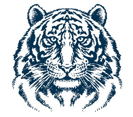 siberian tiger: Detailed tiger head vector Illustration