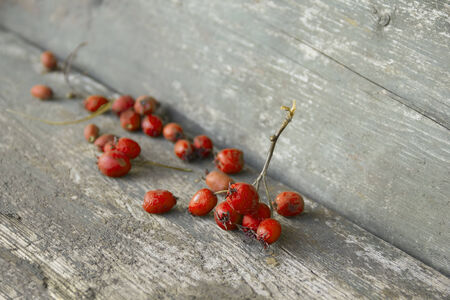 desiccated: Desiccated orange berries on wooden table Stock Photo