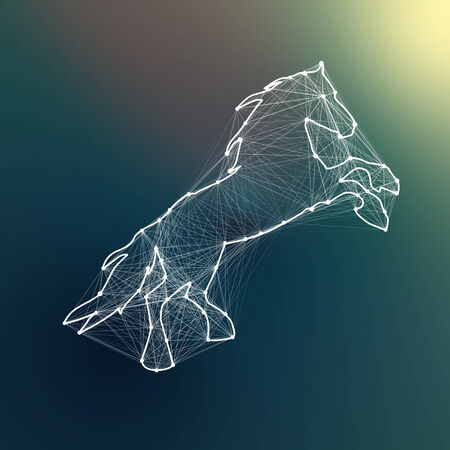 Magic white abstract horse. Connected dots Imagens