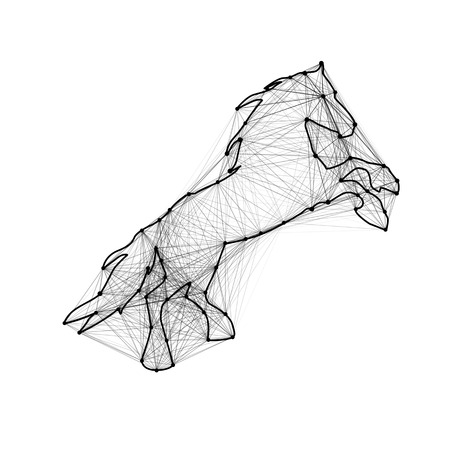 Magic abstract line horse. Connected dots