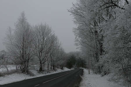 Snowy curvey road to the forest in winter in Lithuania. Landscape