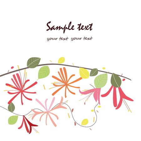 honeysuckle: Honeysuckle floral greeting card vector