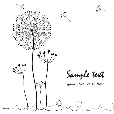 Dandelions floral greeting card vector