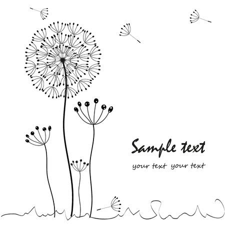 Dandelions floral greeting card vector