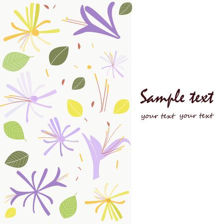 honeysuckle: Honeysuckle flower springtime greeting card Illustration