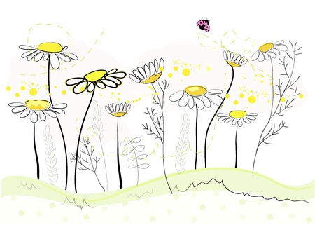 cartoon banner: Daisy spring flowers background. Floral abstract background. Vector illustration Illustration
