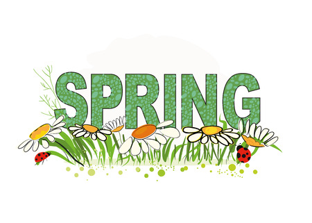 Spring floral background with spring Letters and daisy flower Illustration