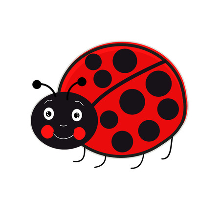 rejection: Lady Bird vector