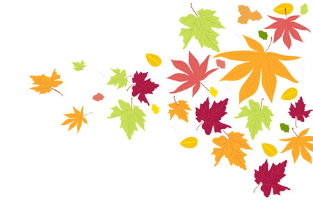 rejection: Autumn leaves falling. Autumn fall background vector illustration