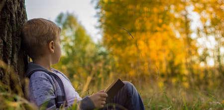 a boy reading a book at sunset under a big tree 免版税图像
