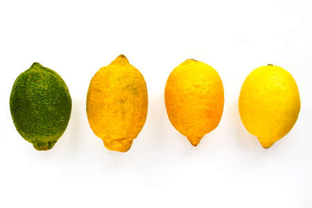 four lemons of different maturity