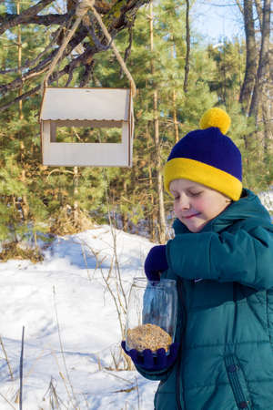 schoolboy hangs a feeder in the woods, and pours bird food