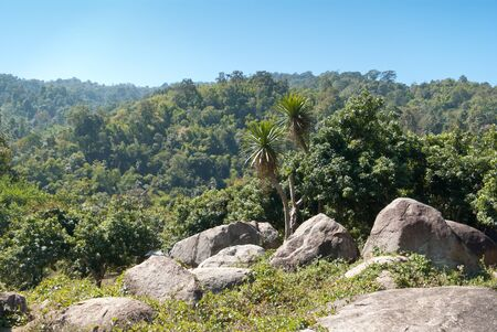View on tropical jungle from mountain in the northern Thailand photo