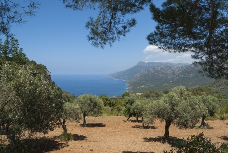 The coast of Mediterranean sea, Mallorca, Spain Stock Photo