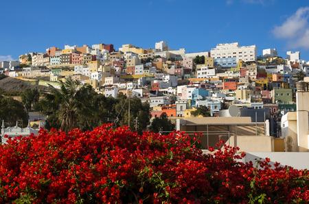 ラス パルマス デ グラン カナリア島、カナリア諸島、スペインの首都の古いアップタウンでカラフルな住宅住宅します。