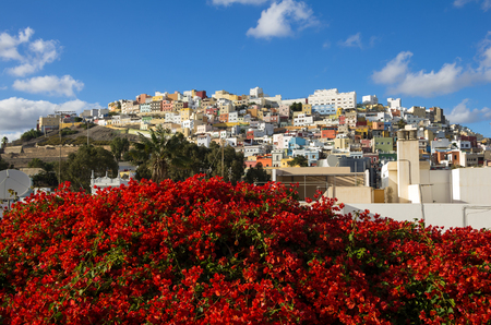 canary: Colorful residential houses in old uptown of Las Palmas de Gran Canaria, the capital city of Canary Islands, Spain Stock Photo