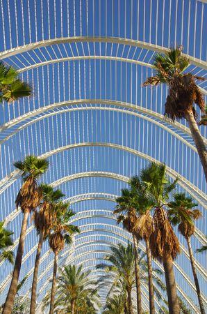 sciences: Palm alley in the City of Arts and Sciences (Ciudad de las artes y las ciencias) in Valencia, Spain Stock Photo