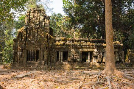 strangler: Ta Prohm temple at Angkor Wat complex, Siem Reap, Cambodia