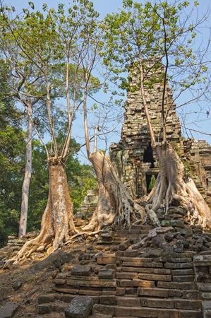 strangler: Ruins of Prasat Preah Palilay temple at Angkor Wat complex, Siem Reap, Cambodia Stock Photo