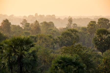southeastern: Sunset over the jungle of Cambodia, south-eastern Asia
