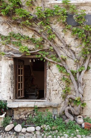 traditional climbing: Window of an old stone house at medieval village Perouges in France with green lianas climbing up the wall Stock Photo