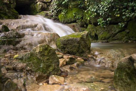 brook: The brook in the forest of France Stock Photo